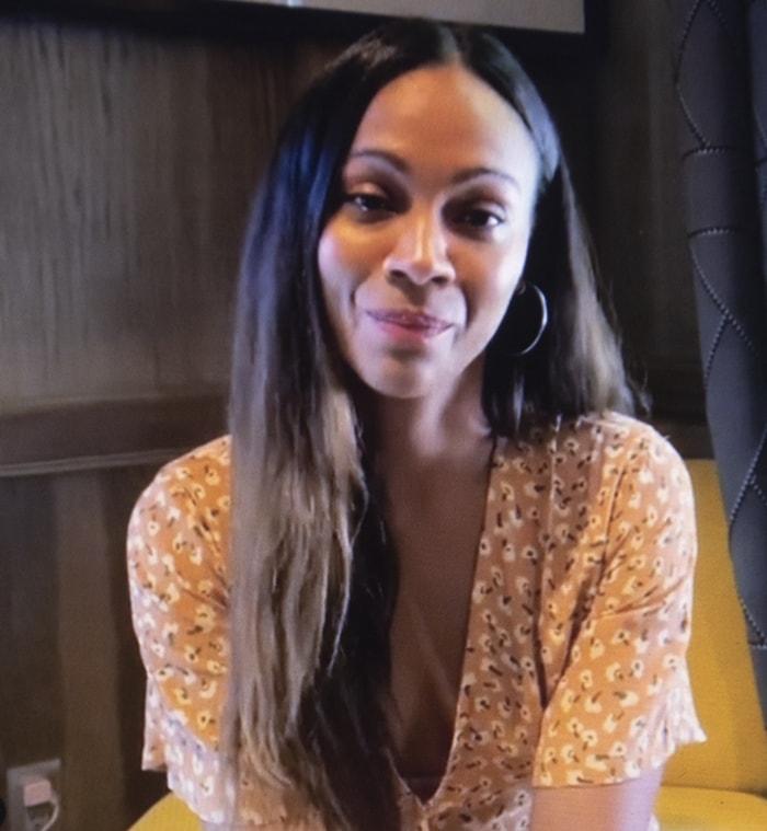 Zoe Saldana apologized for portraying Nina Simone in a 2016 biopic