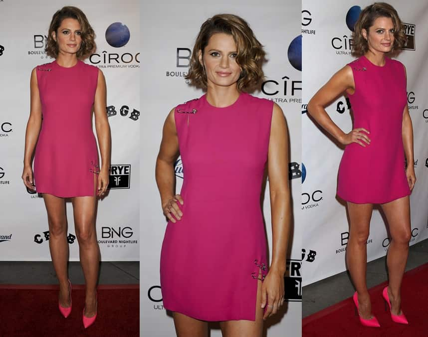 Stana Katic at the CBGB special screening in Los Angeles, California, on October 1, 2013