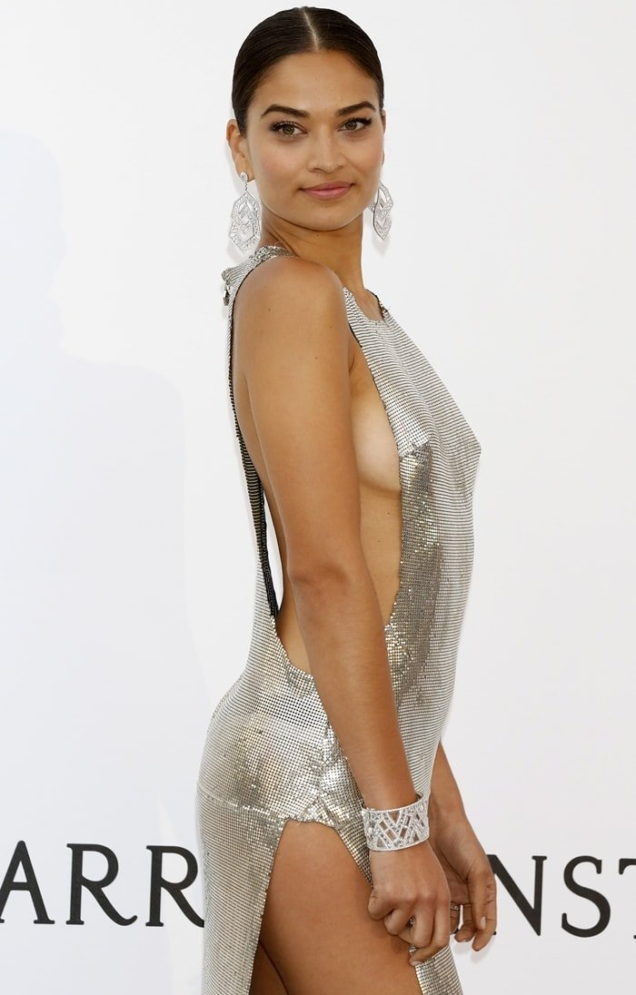 Shanina Shaik on the red carpet while showing side boob at the 2017 amfAR Gala