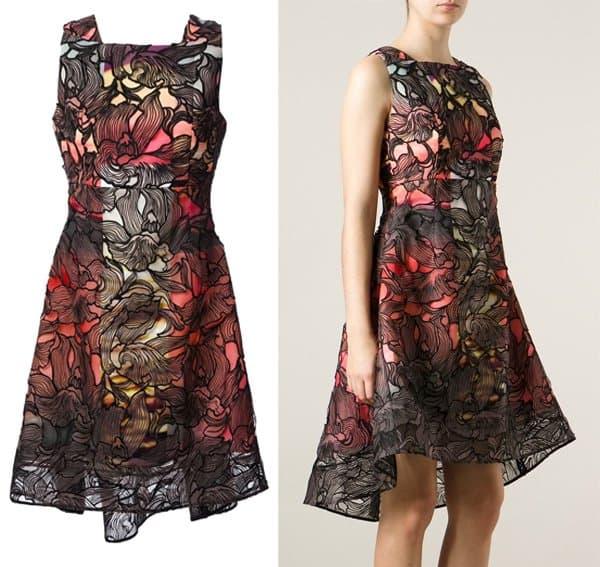 Peter Pilotto Eclipse Lace Overlay Dress