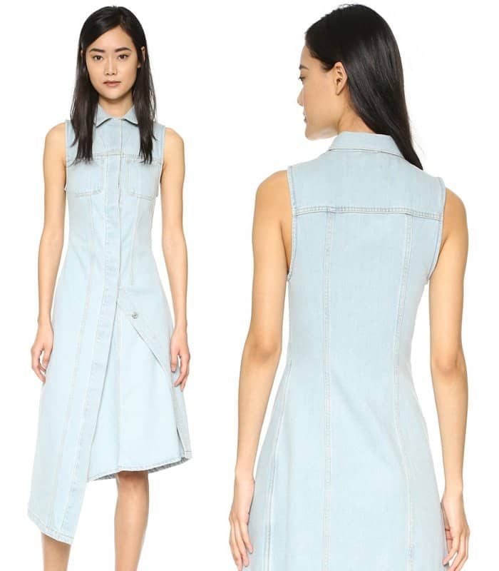 Acne Carda Denim Dress