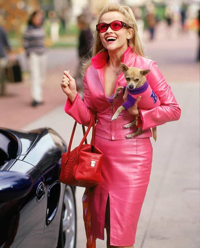 "15th anniversary of ""Legally Blonde"""